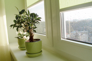 Fenster und Türen aus Kunststoff